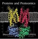 蛋白质与蛋白组学