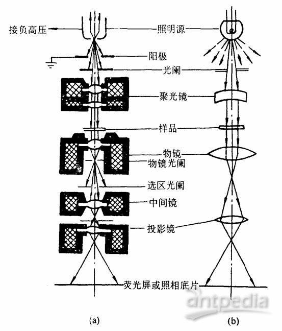 透射电子显微镜的结构与v结构原理初中部天津汇文图片