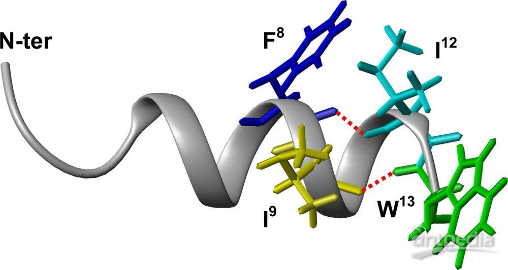 氨基酸组成,分子大小以及空间结构上与流感病毒血凝