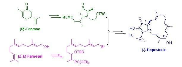 2-双酮结构,其中一个羰基呈现烯醇式结构