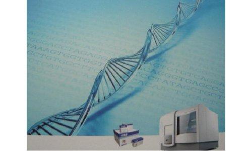 抑制疾病提高诊疗效率 基因测序技术亮相analytica china