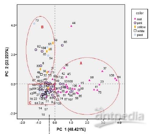 108个荷花品种的主成分分析图