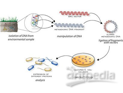 宏基因组学测序技术研究产志贺毒素大肠杆菌o104:h4