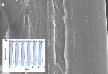 苏州纳米所光致形变纳米复合智能材料研究取得进展