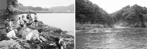 科学家恢复福岛海啸破坏的渔业和海洋环境