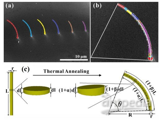 【Appl. Phys. Lett. 100,143106 (2012);Appl. Phys. Lett. 102, 213112 (2013)】。然而,怎样高效的获得更大面积的三维纳米功能结构,还是亟待解决的问题。   与块材或微米尺度的材料相比,一维纳米材料体系在热处理过程中,物质扩散、颗粒生长以及再结晶过程的差异能更显著的以形变的方式体现。因此,热处理有望成为一维纳米结构生长后三维形变调控研究的潜在手段。但怎样在纳米尺度上可控的引入组分、结构以及应力分布的变化,还具有很大的挑战性。最近,物理所微加