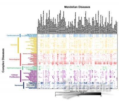杂疾病遗传图谱