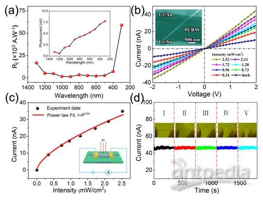 有机-无机杂化宽光谱探测器研究获进展|半导体|器件