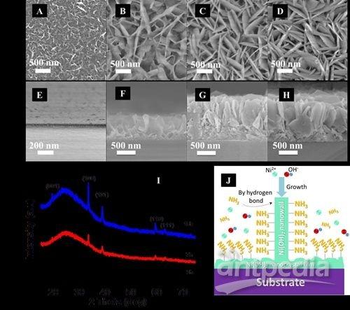苏州纳米所在三维多孔纳米金属氧化物研究中取得进展