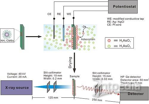 x射线荧光与电促吸附方法结合检测水环境中as(iii)的