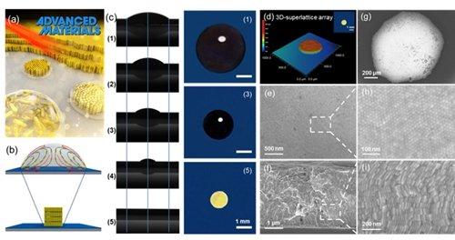 液滴挥发自组装过程;(d-i)纳米金超晶格结构三维