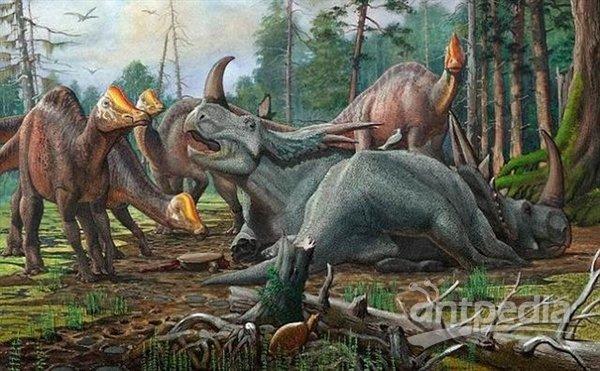 很可能远古爬行动物恐龙也会