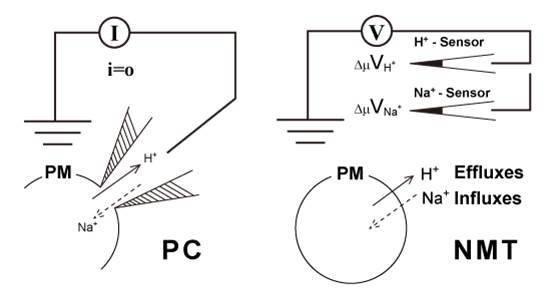 混沌振子微弱信号检测的噪声影响研究