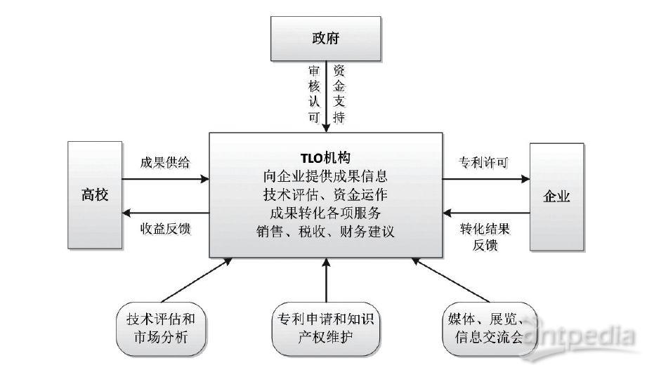 高校教学运行组织结构