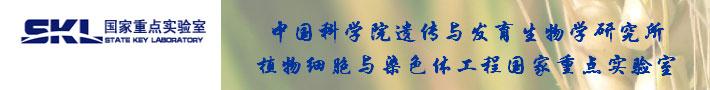 中国科学院遗传与发育生物学研究所植物细胞与染色体工程国家重点实验室