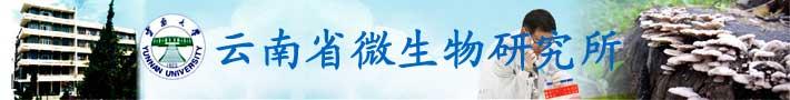 云南大学云南省微生物研究所