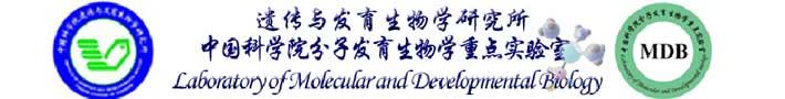 中国科学院分子发育生物学重点实验室