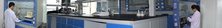 蘇州禾川化學技術服務有限公司