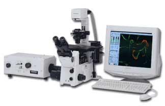 荧光显微镜使用方法 悬玉环使用方法图 袖扣使用方法图解