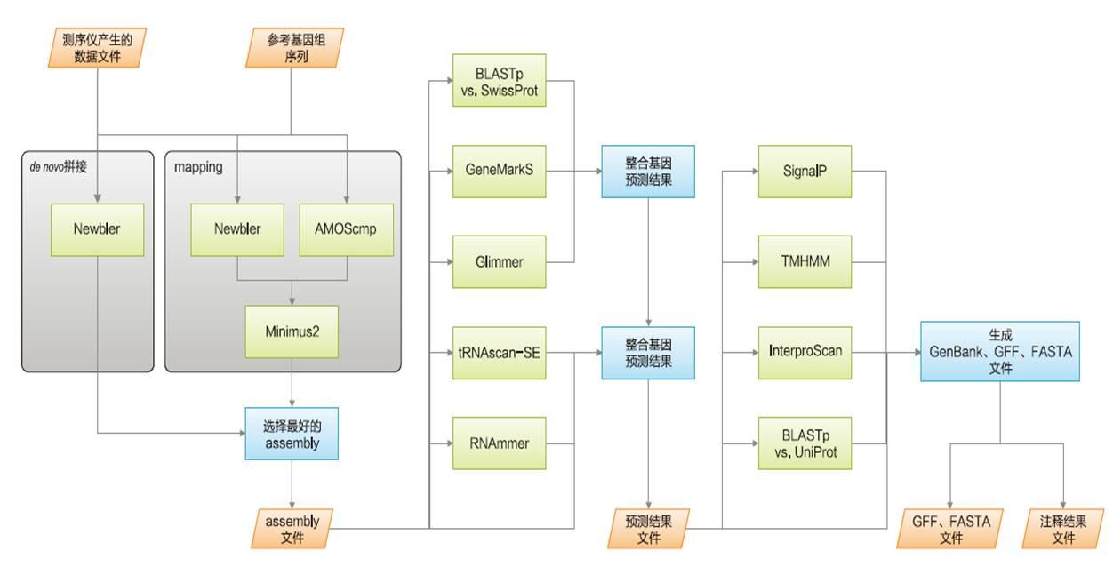 个人化操作基因组测序仪