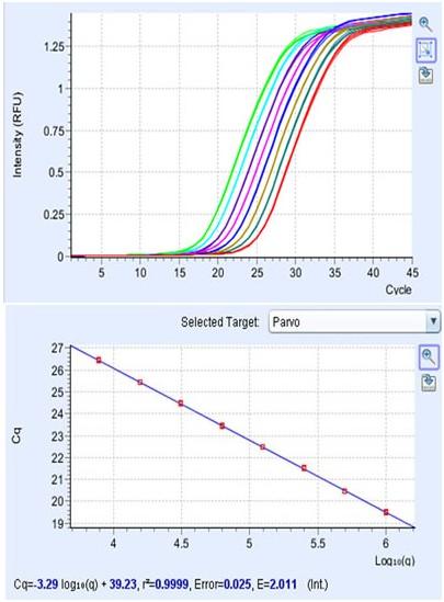 nano实时荧光定量pcr仪