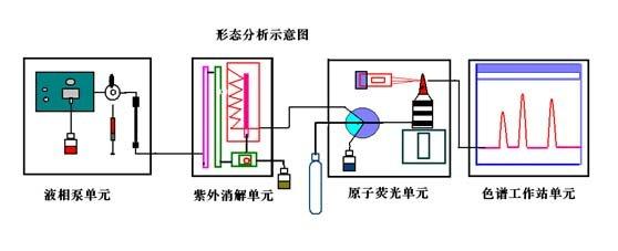 钴原子结构示意图