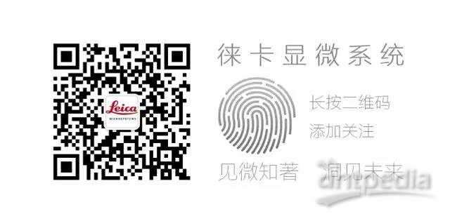 WeChat Image_20170803131035.jpg