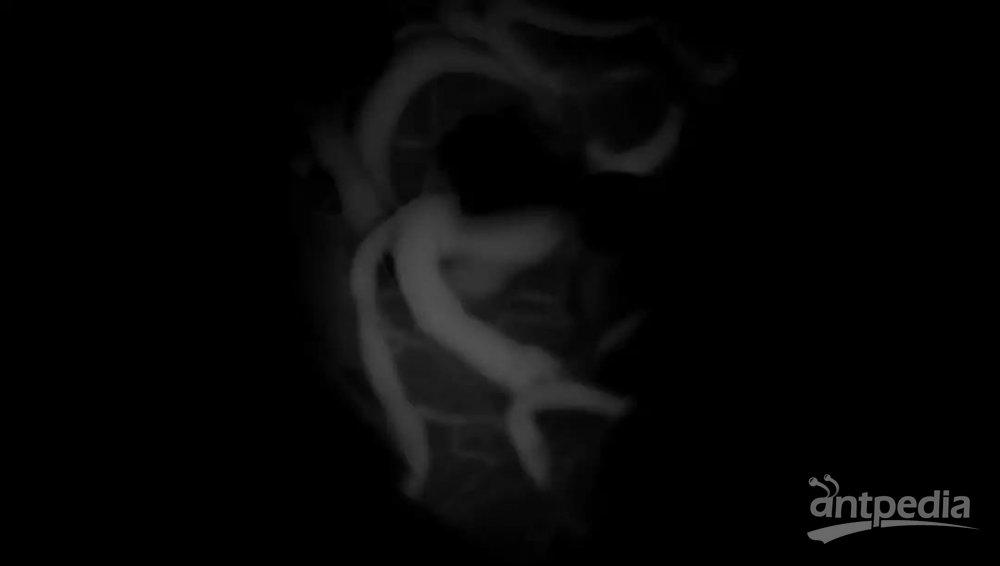 微信图片_20180928145812.jpg