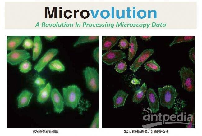 细胞生物学成像分析