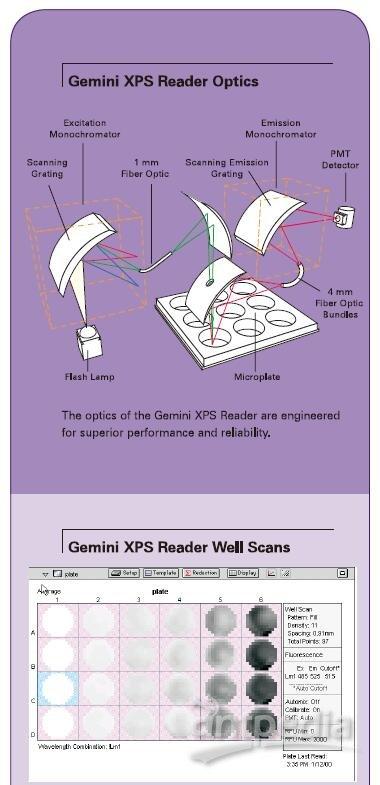 荧光酶标仪Gemini XPS