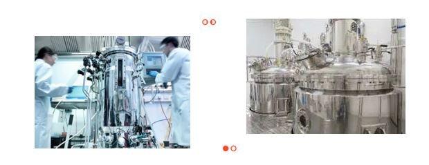 生物发酵.JPG