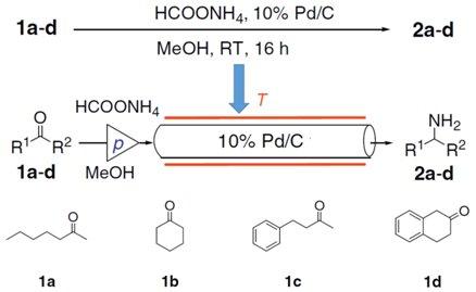 还原胺化图4.jpg