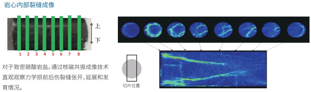 桌面低场核磁共振分析系统 岩心检测仪