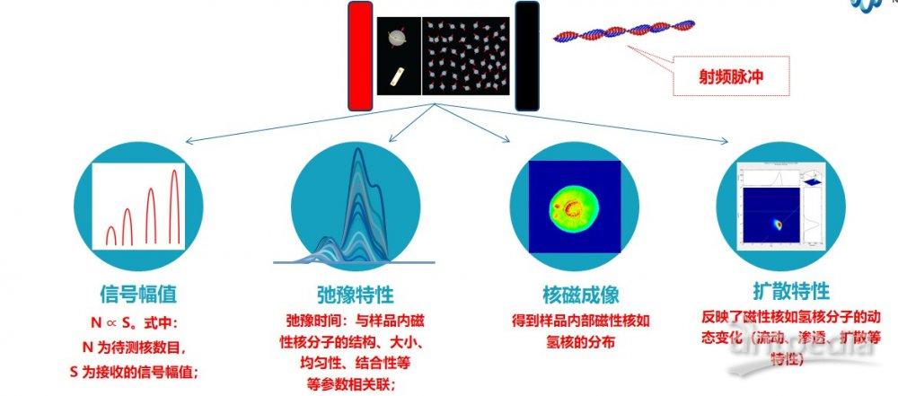 核磁共振弛豫时间测量方法 弛豫核磁 核磁共振